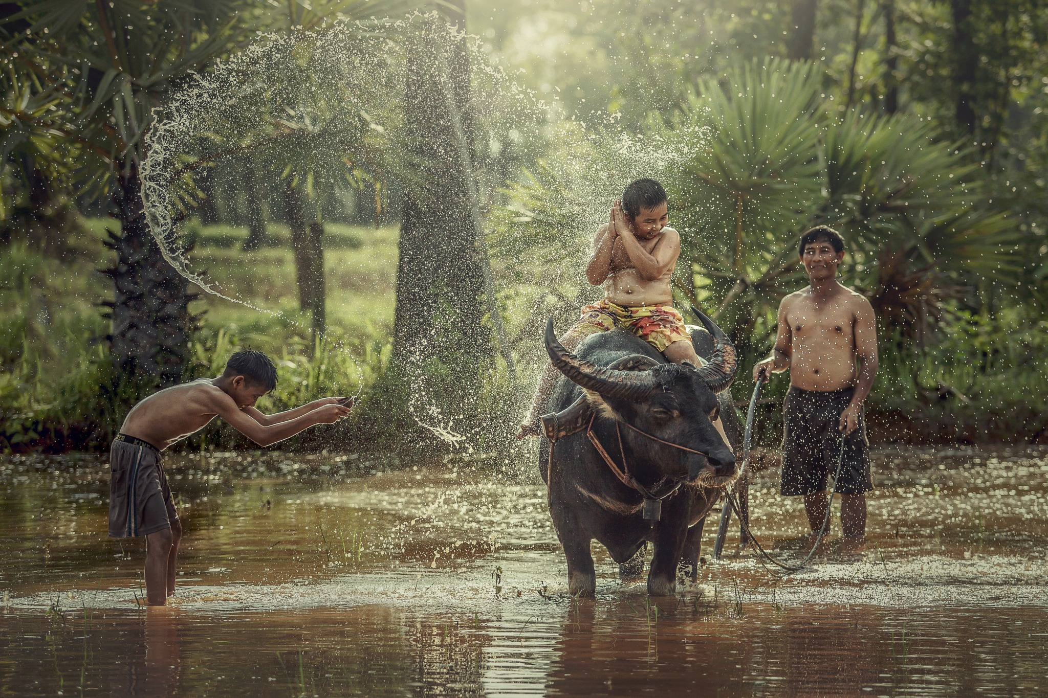 Happy boy riding water buffalo.