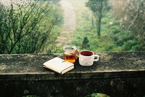 book-coffee-honey-nature-Favim.com-2275800