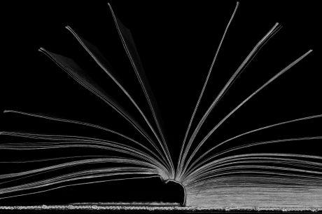 52249240-ventaglio-letterario