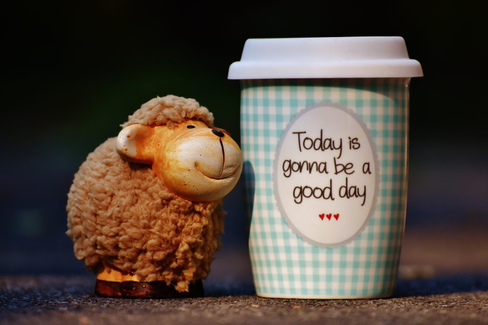 cheerful-close-up-coffee-208165