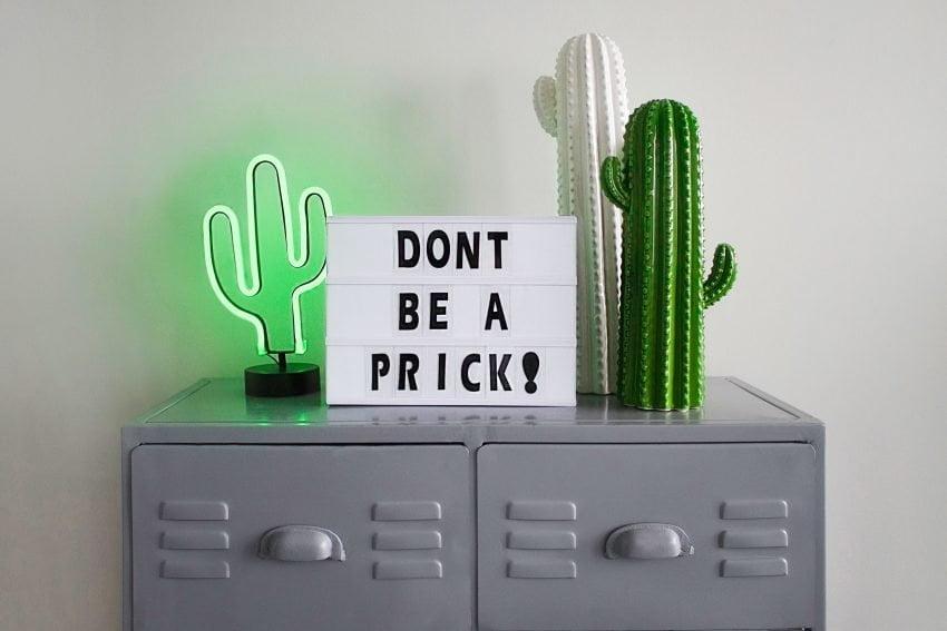 advice-cabinet-cactus-1228483